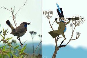 Про мужчин, женщин и птиц